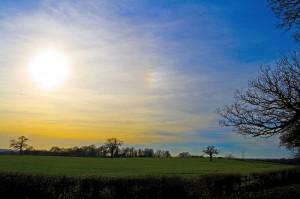 800px-Horton_Heath_Landscape
