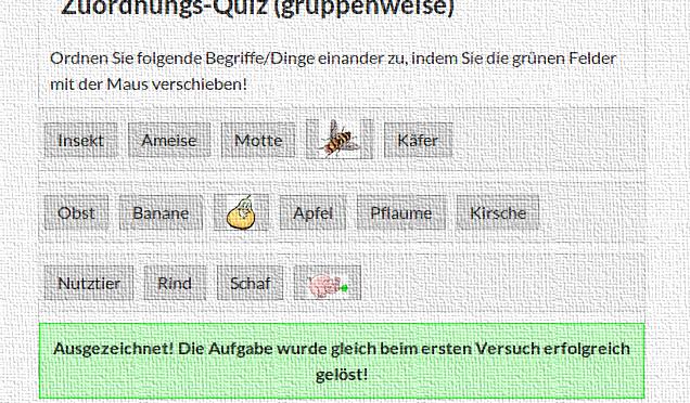 Zuordnungs-Quiz (gruppenweise)
